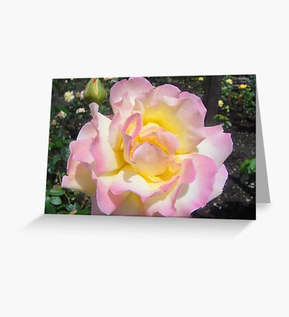 Inner Heart That Glows Greeting Card