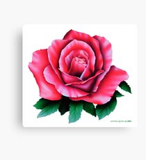 AIRBRUSHED ROSE  Canvas Print