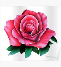 AIRBRUSHED ROSE  Poster