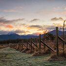 Early Morning, Mountain River, Tasmania #8 by Chris Cobern