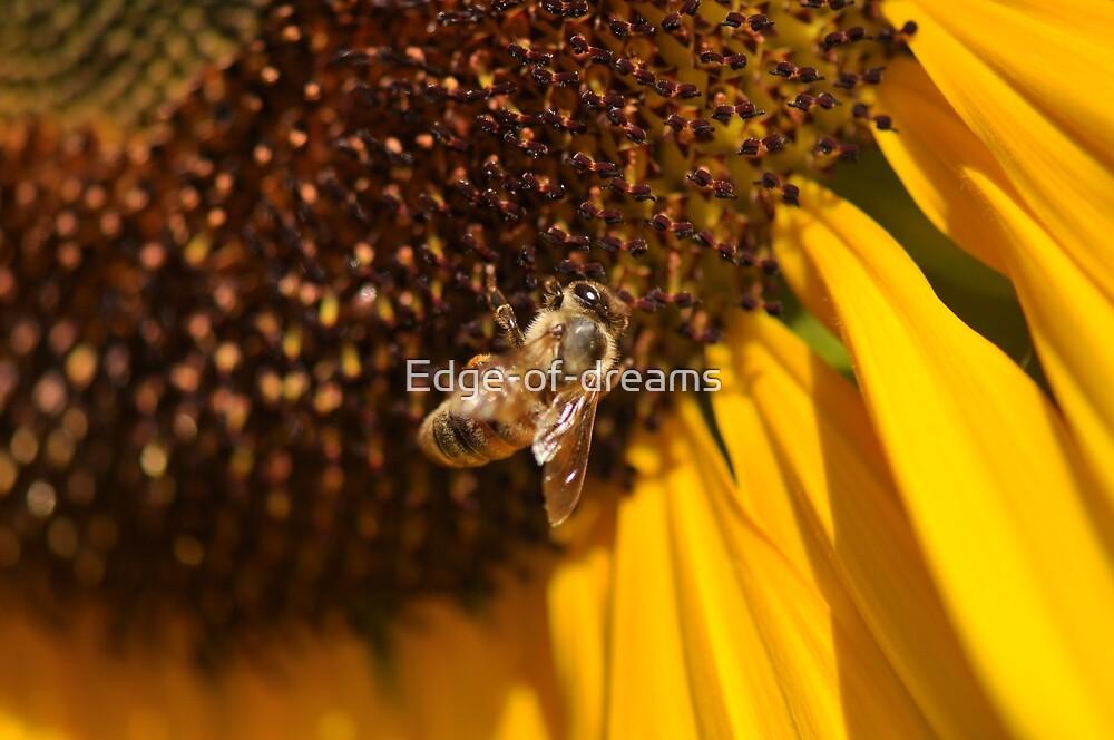 Bee Paradiso by Edge-of-dreams