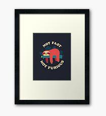 Not Fast, Not Furious Framed Print
