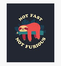 Not Fast, Not Furious Photographic Print