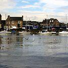 Ayr Harbour  by biddumy