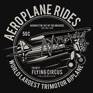 Flugzeug-Fahrten - das grafische T-Shirt des Piloten von aashiarsh