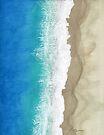 Bird's Eye Coastline by Sun Dog Montana