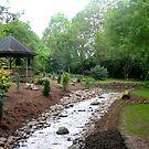 Hatcher Gardens by Fred Moskey