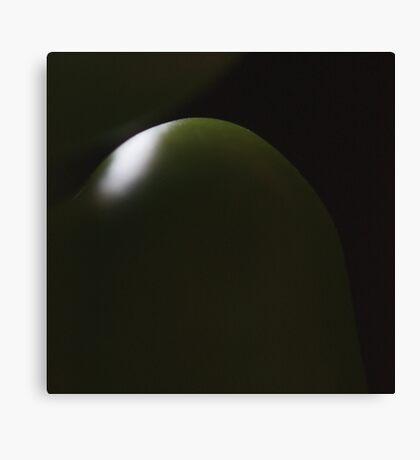 dark green light Canvas Print