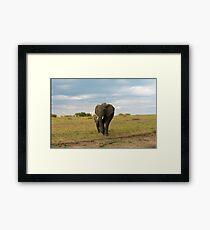Wild Elephant mom in Kenya Framed Print