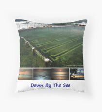 Down By The Sea - 2010 Calendar - Front Cover Throw Pillow