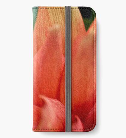 Modebewusste Käfer iPhone Flip-Case