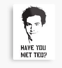 Hast du Ted getroffen? Metallbild