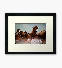 The Buffalo Hunt ... Framed Print