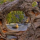Nature's Frame by Justin Baer