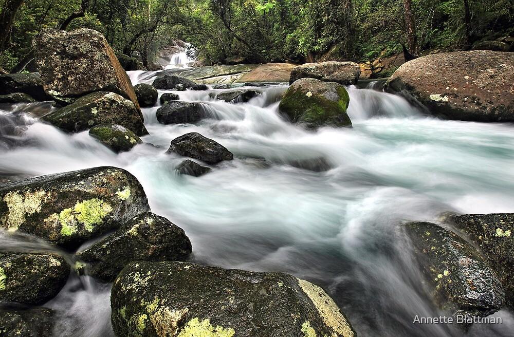 Josephine Falls by Annette Blattman