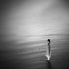 Feather Mist by David Piszczek