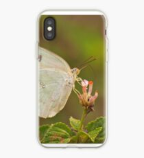 Feeding butterfly iPhone Case