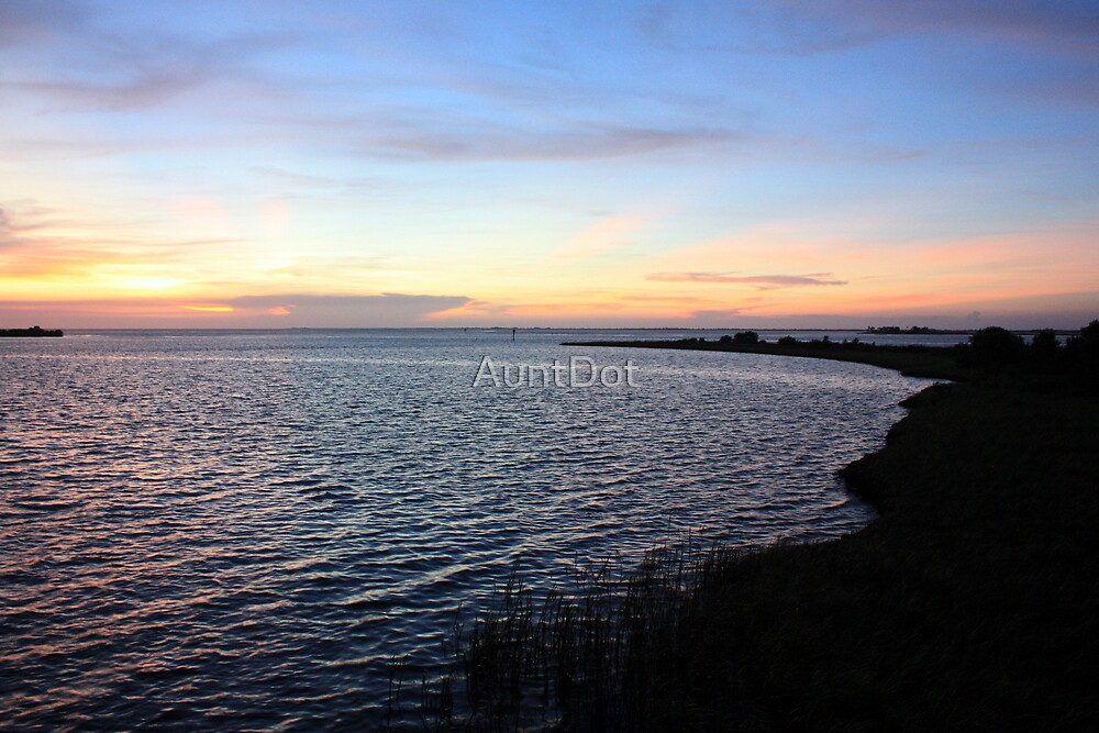 Sunset on the Gulf of Mexico, Shore View by AuntDot