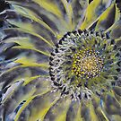 Encaustic Sunflower by Kimberly Langlois