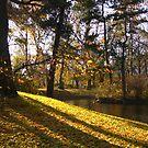 Autumn in Ujazdowski Park - Warsaw, Poland by Lukasz Godlewski