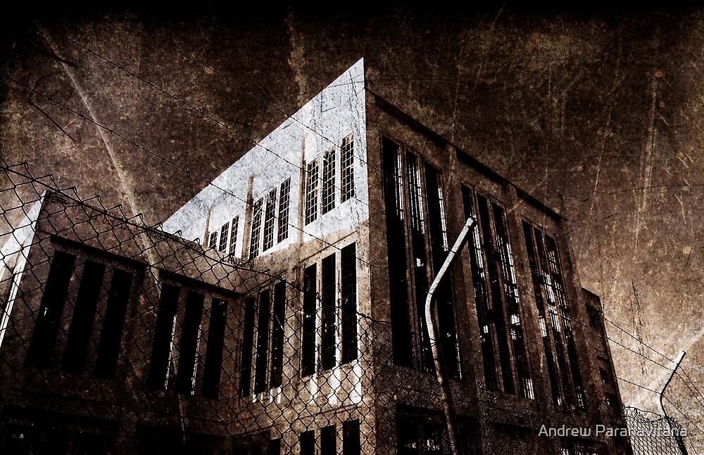 Fortress by Andrew Paranavitana