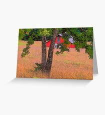 THE COLOR OF COUNTRY Greeting Card