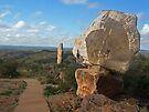 The Living Desert..... Broken Hill by Juilee  Pryor