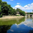 town.Gyor_river.Rabca_July2010Hungary by ambrusz