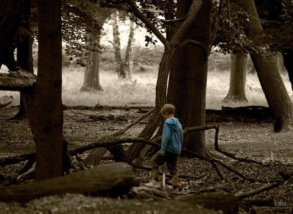 Quot Little Boy Blue Lost In The Woods Quot By Kael Redbubble