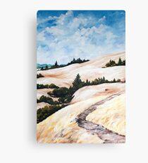 Mt. Tam Trails Canvas Print