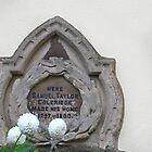 Blumen für einen Dichter von Alexandra Lavizzari
