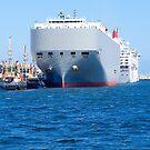 Fremantle Port, Western Australia. by johnrf