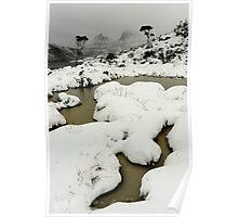 blizzard... Poster