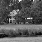 Southern Living Georgia Salt Marsh Style by Michael McCasland