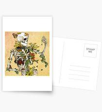 Postales Huesos y Botánica