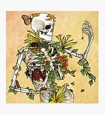 Bones and Botany Photographic Print