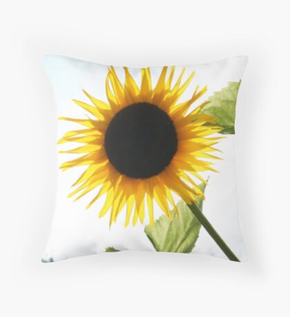 Total Eclipse of the Sun Throw Pillow