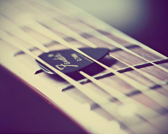 Sweet Song by ameliakayphotog