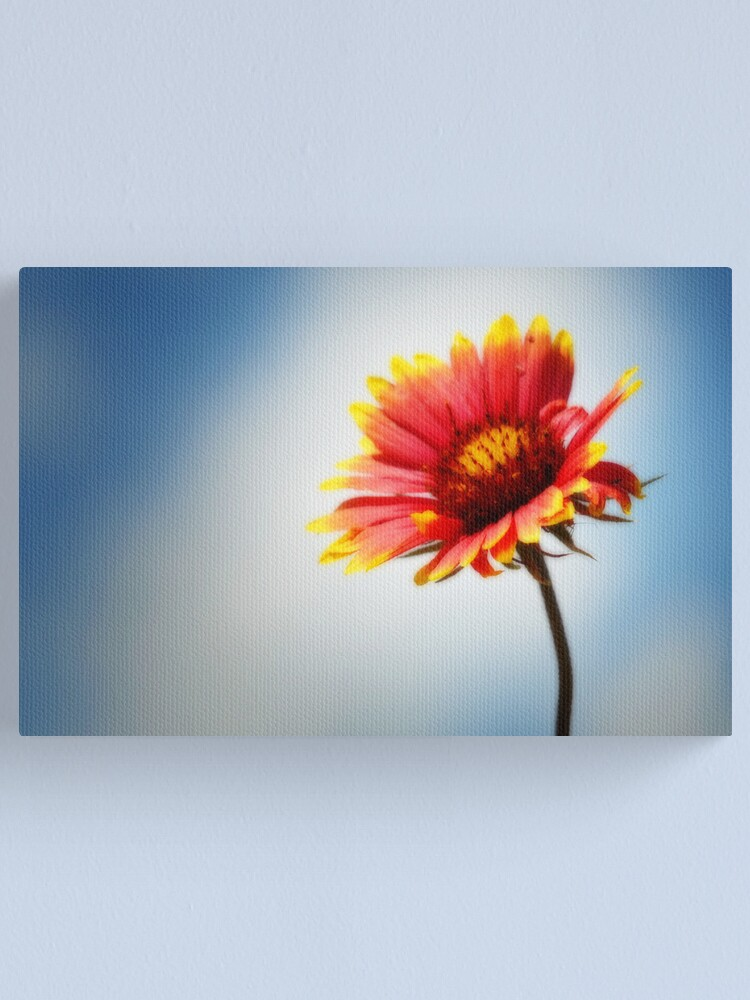Alternate view of Indian Blanket Canvas Print