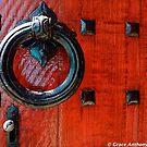 Dormant Opportunity by Grace Anthony Zemsky