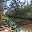 A walk along the Union Canal by Tom Gomez