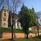 Wawel castle in Krakow, Poland by Lukasz Godlewski