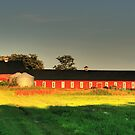 Long Red Barn by Larry Trupp