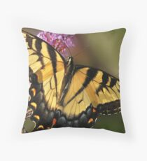 Daily Feed Throw Pillow