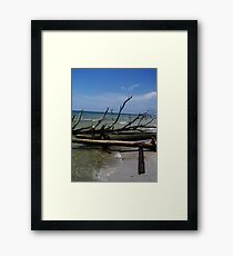 Dead in the Water.... Framed Print