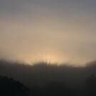 Foggy Sunrise through the Trees - Landscape Photography by designbycheyney