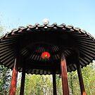 Chinese Garden of Friendship by vonb