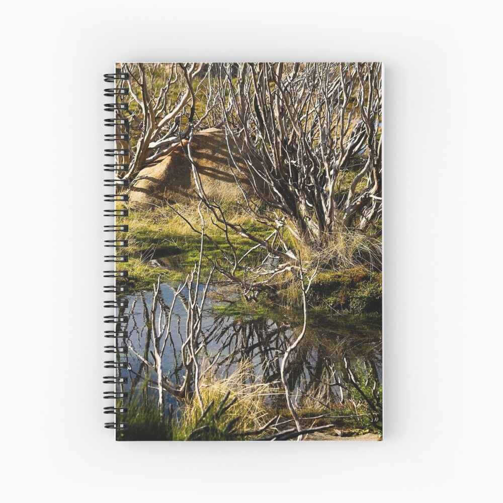 Devil's gullet wetlands Spiral Notebook