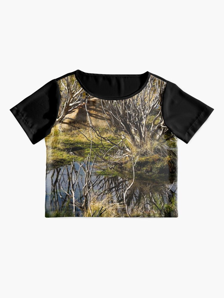 Alternate view of Devil's gullet wetlands Chiffon Top