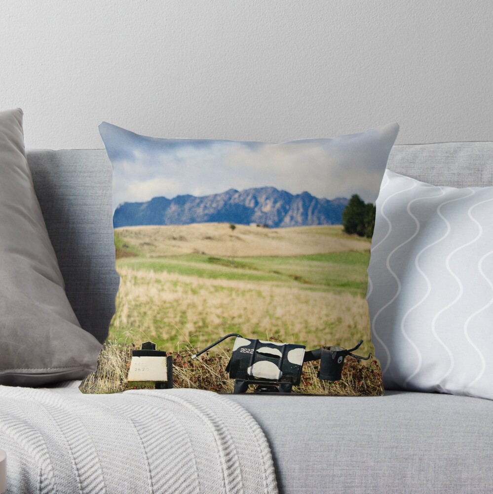 The letterboxes Throw Pillow